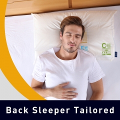 Mr.Z Recommended Combination Back Sleeper Tailored